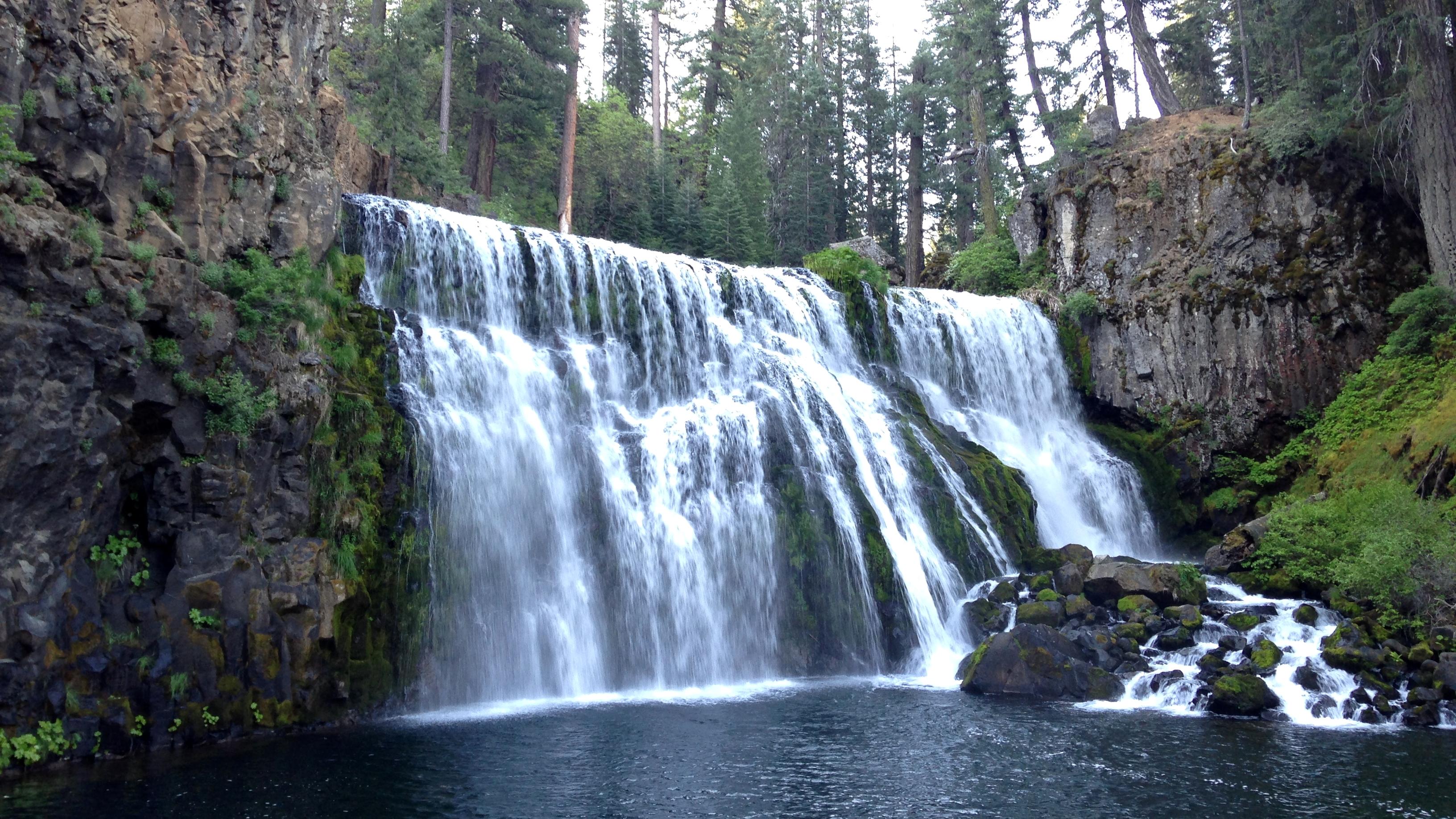 【シャスタ4日目朝】朝食前にマクラウド川の滝めぐり!